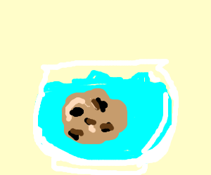 A chocolate chip cookie in a fish bowl