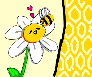 bee and flower in symbiotic relationship