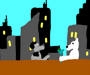 two dogs at a rooftop bar