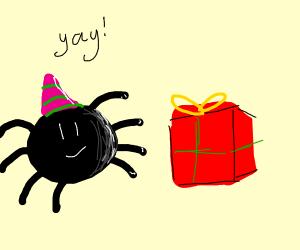 Birthday Spider
