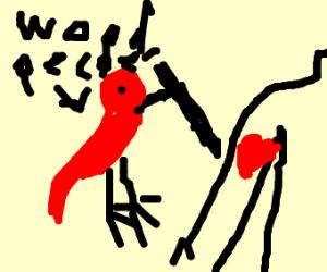 Woodpecker Tattoo Artist