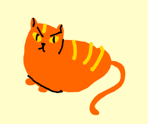 angry fat orange cat
