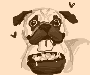 Pug eating mac and cheese