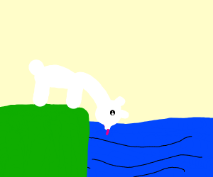 a white llama licks the sea