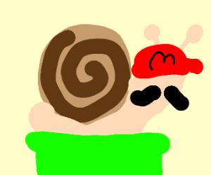 Mario the snail