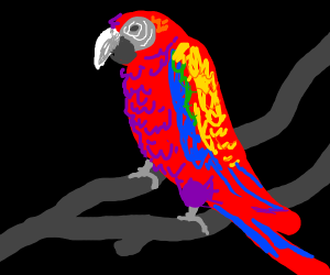 rainbow parrot (prolly trying to be erotic)