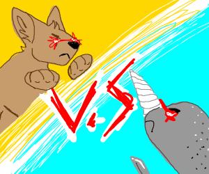 Kangaroo vs. Walrus