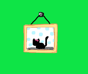 Picture of a cat hanging up