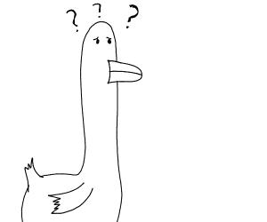 A Clueless Duck