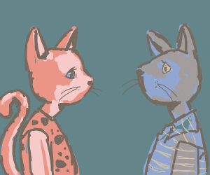 Cat people staring at each other