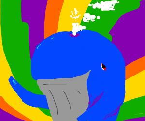 mystic whale
