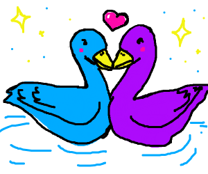 Two ducks  in love