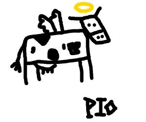 Holy Cow!! (PIO)