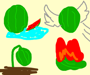The Elemelons (earth, water, fire, air)