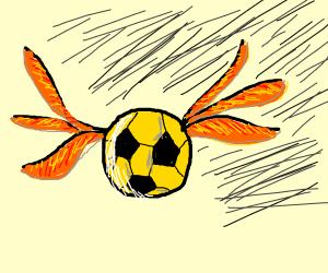 Quidditch Football (Soccer)