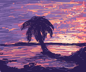Palm tree in the sunset.