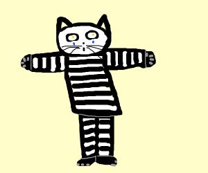 Mime Cat