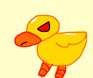 agwessive duck uwu