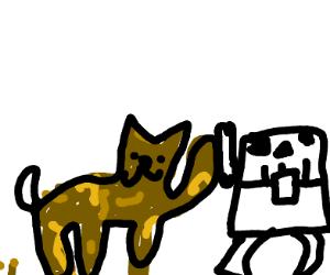 zombie cat with sceleton chest