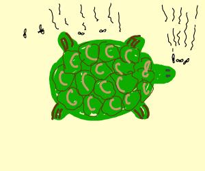 Smelly TuRT