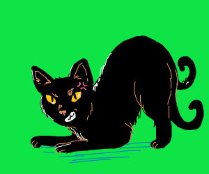 Two-tailed angry cat