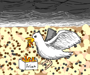 Seagull eating fries