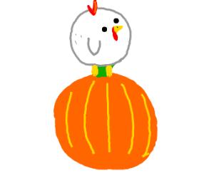 Chicken standing on a pumpkin
