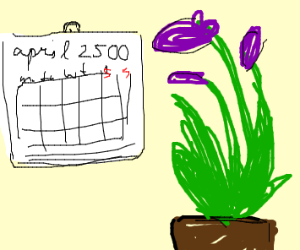 Plant from the Year 2500