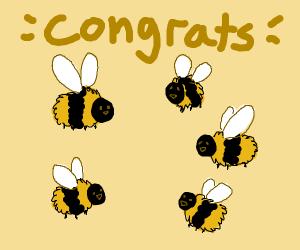 Bees saying congrats