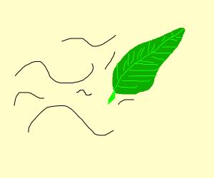 a leaf blows yonder