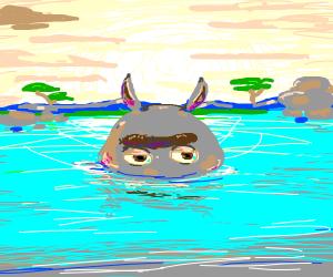 it looks like moto (hippo) likes you!