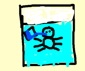 Bedbug Drinking