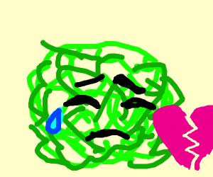 little heartbroken cabbage