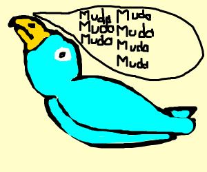 Bird saying Muda Muda Muda