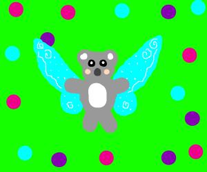 fairy koala