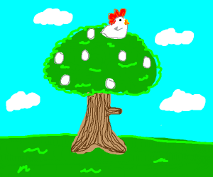 chicken laying eggs on top of a bushy tree