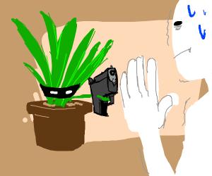 Plant Robber
