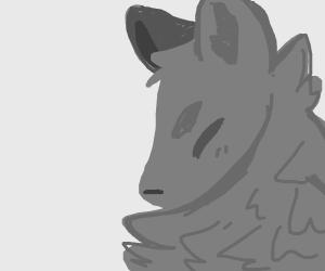 fluffy grey wolf