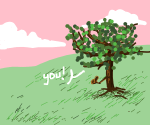 A tree is pointing at you