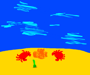two crabs on a beach