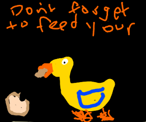 """Don't forget to feed your ducks!"""
