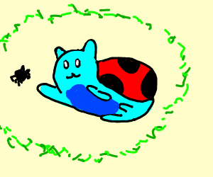 My name is Catbug, what's yours?