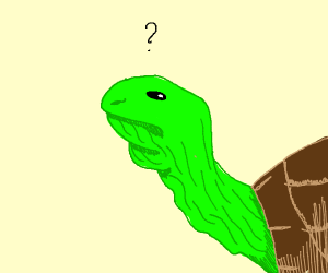 double chinned turtle is confused