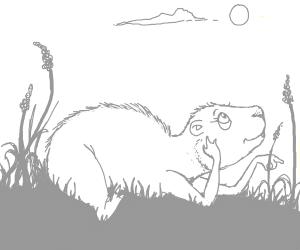 Capybara Daydreaming