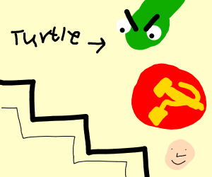 Turtle angry at a Zigzag