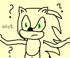 Sonic wonders what something is