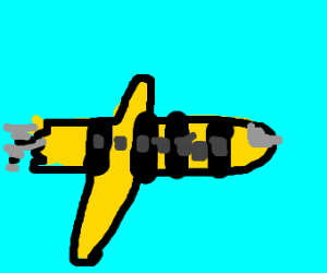 A Bee-plane