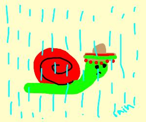 rip mexican snail for not having an umbrella