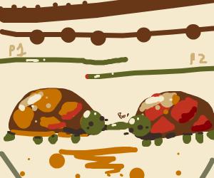Turtle vs Turtle