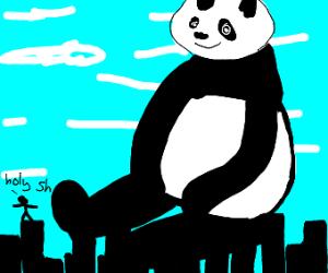 Colossal Panda